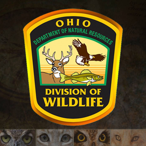 Ohio Fishing Licenses & Rates